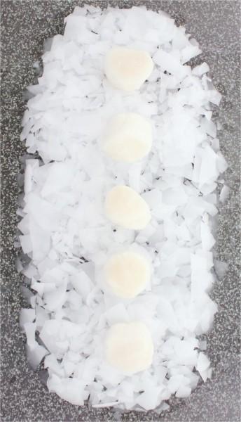 Jakobsmuschelfleisch Scallops 10/20