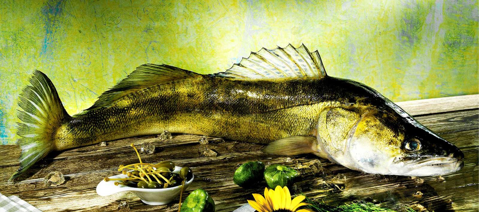 Ganzer-Fisch-Suesswasser