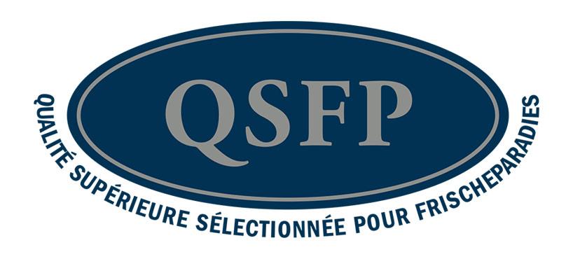 QSFP-Logo