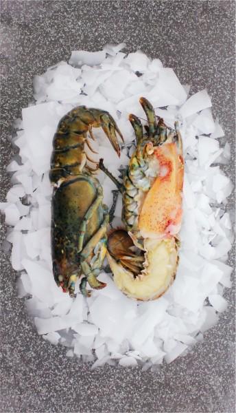 High Pressure Lobster Hummer halbiert