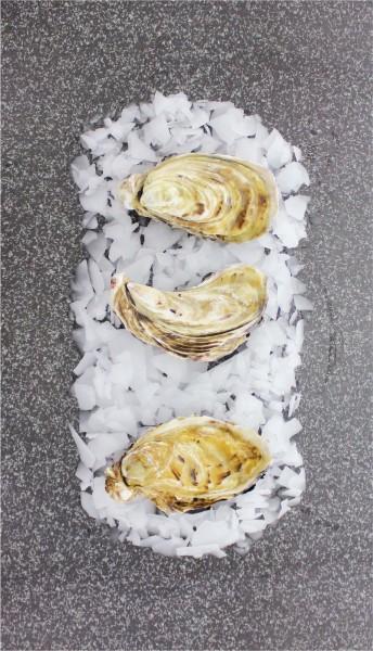 Austern Fines de Claires M (12 Stück)