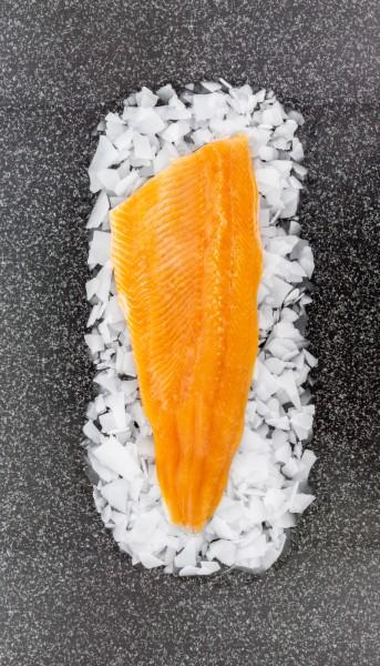 QSFP Lachsforellenfilet mit Haut