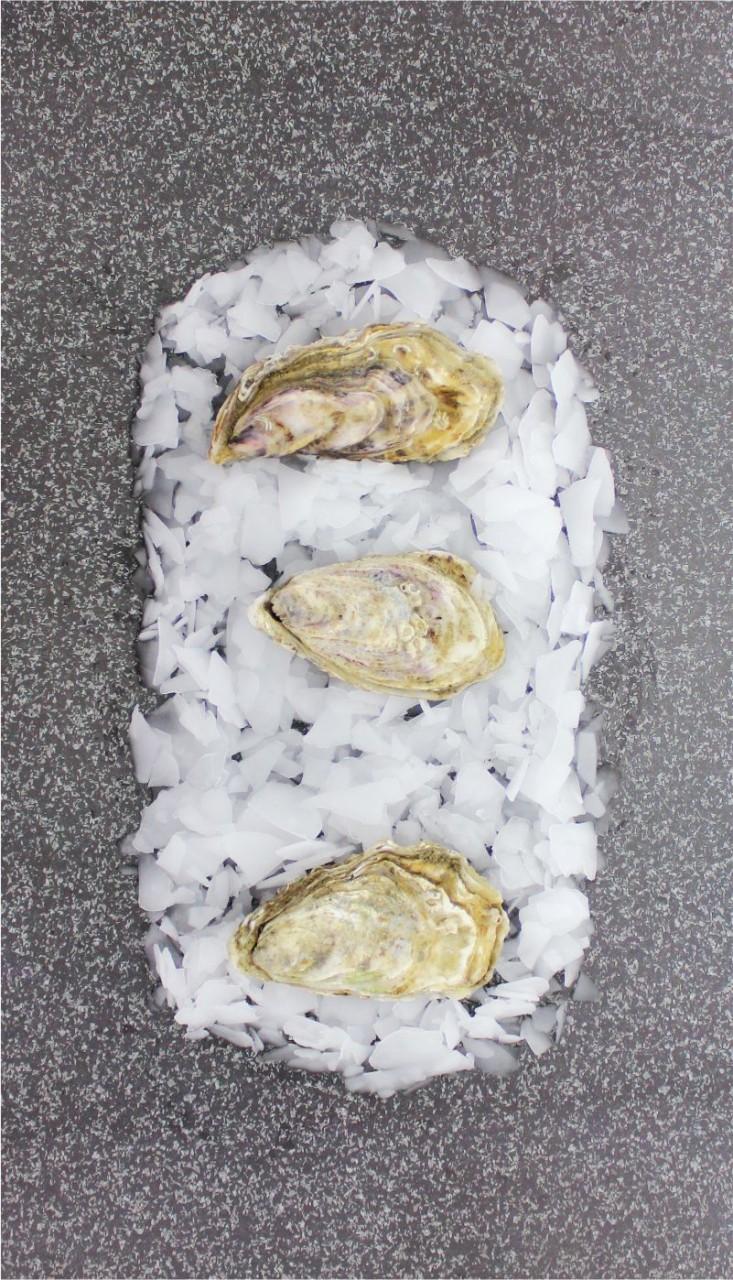 Tsarskaya Austern - Größe M (12 Stück)